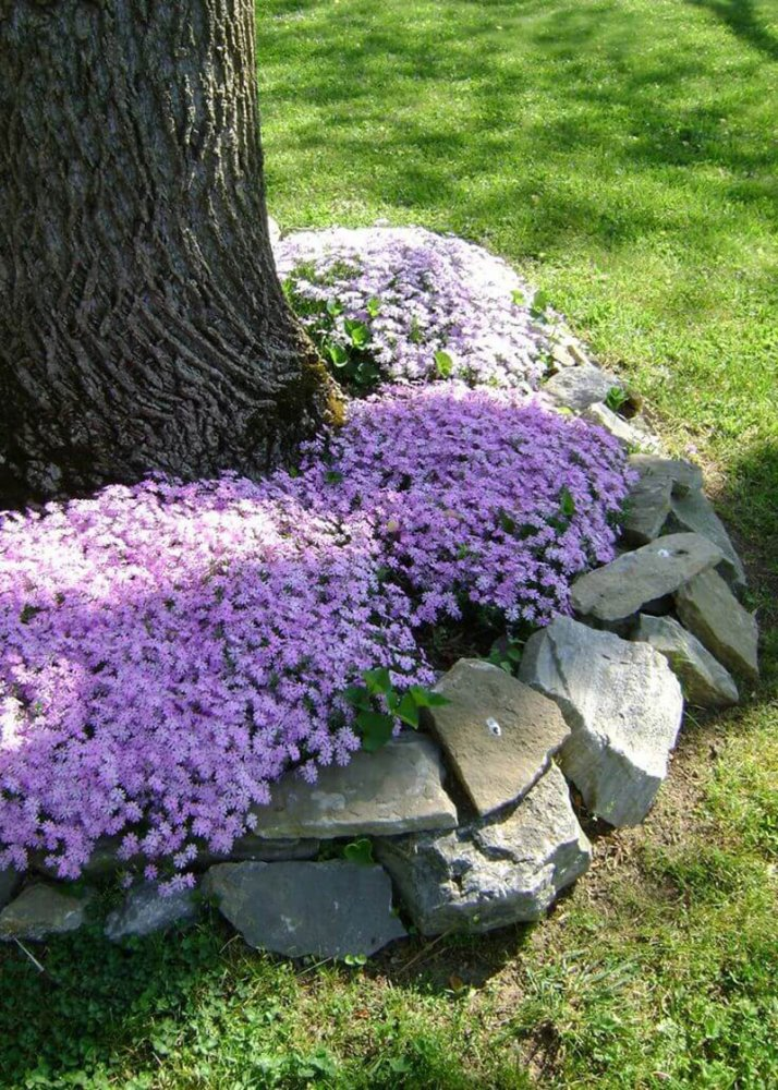 10-flower-bed-ideas-homebnc