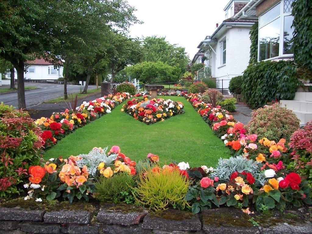 цветы для двора фото работать пересели