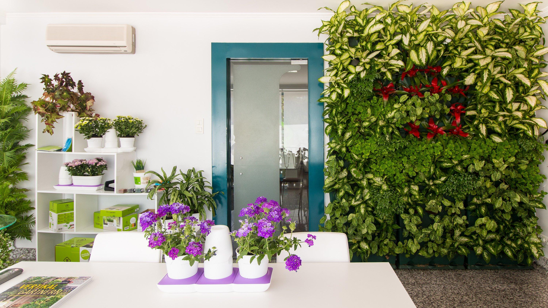 Мини-сад в столовой