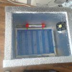 Как сделать инкубатор в домашних условиях