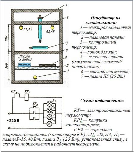 Как сделать домашний инкубатор схема
