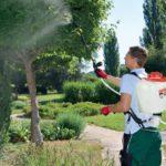 Обзор садовых опрыскивателей
