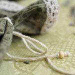 Семена баклажанов: сбор, проращивание, уход за растениями