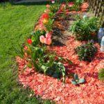 Как и чем производить мульчирование почвы?