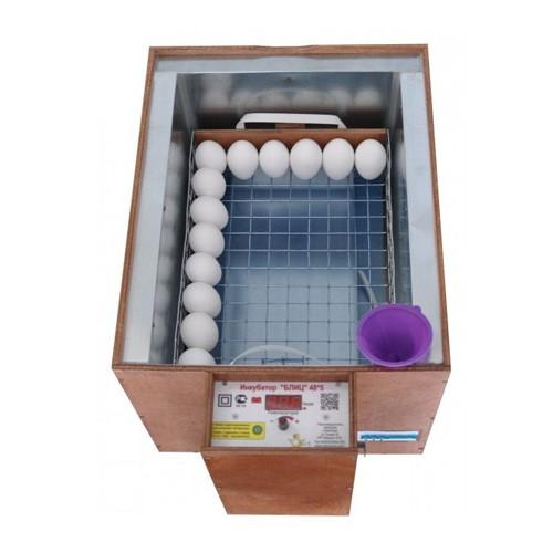 Укладка яиц в лоток