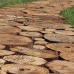 Садовые дорожки из деревянных спилов, фото. Как сделать дорожку из спилов