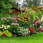 Цветники на даче – фото идей по оформлению цветника своими руками