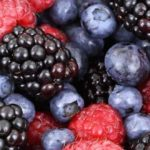 Лесные ягоды, название и фото, съедобные и ядовитые растения
