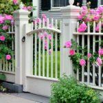 Цветы для палисадника — как красиво посадить растения перед домом, фото
