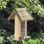 Как построить кормушку для птиц из фанеры, картона, дерева своими руками: чертеж с размерамику