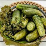Соленья – лучшие рецепты приготовления вкусных блюд